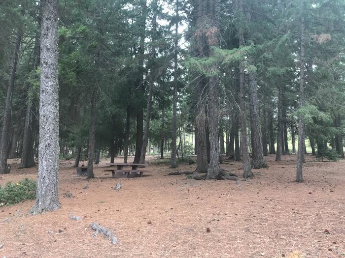 Link Creek Site #3