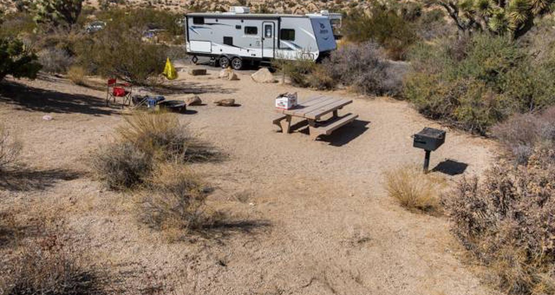 Jumbo Rocks site 94View of campsite