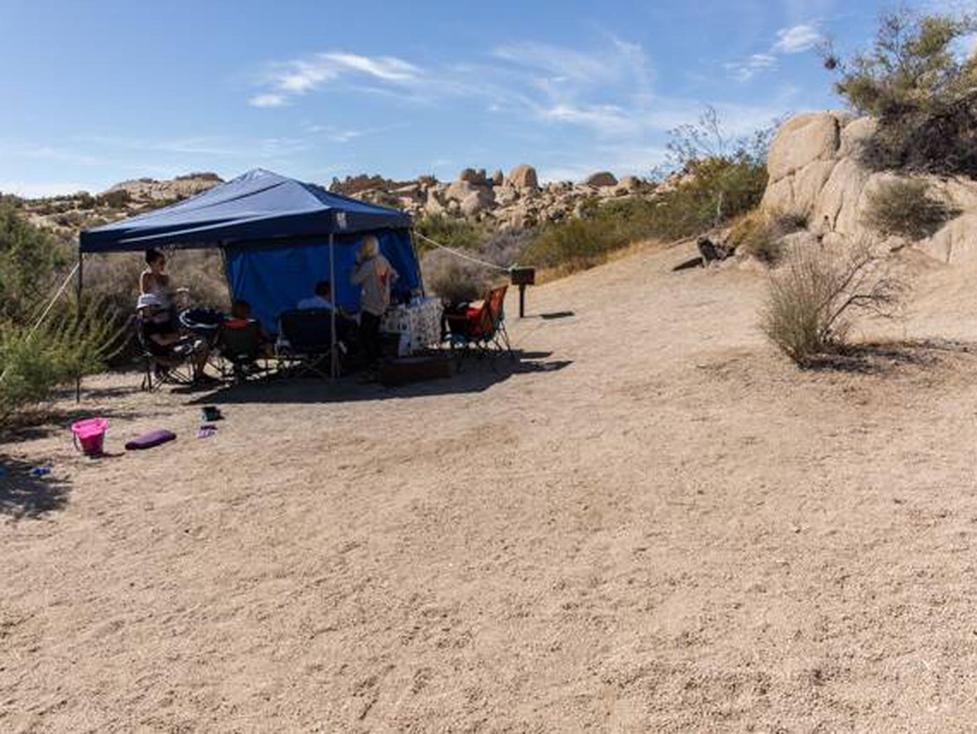Jumbo Rocks site 97Another view of campsite
