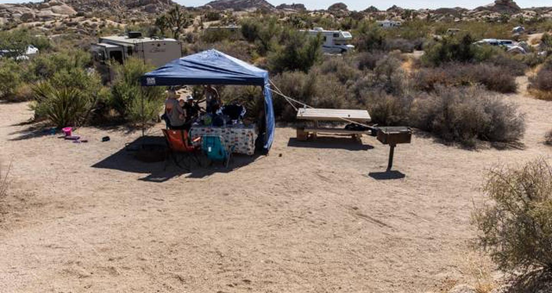 Jumbo Rocks site 97View of campsite