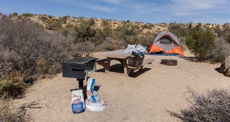 Jumbo Rocks site 99View of campsite
