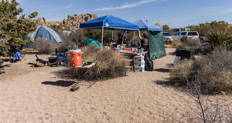 Jumbo Rocks site 100View of campsite