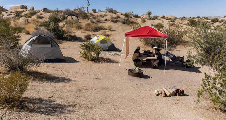 Jumbo Rocks site 101View of campsite