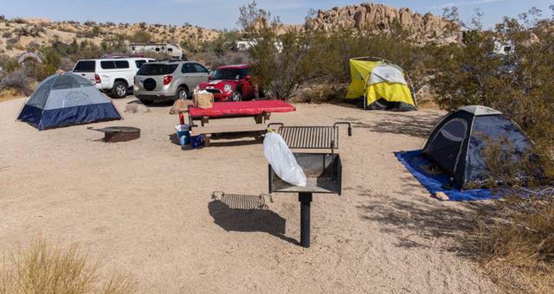 Jumbo Rocks site 102View of campsite