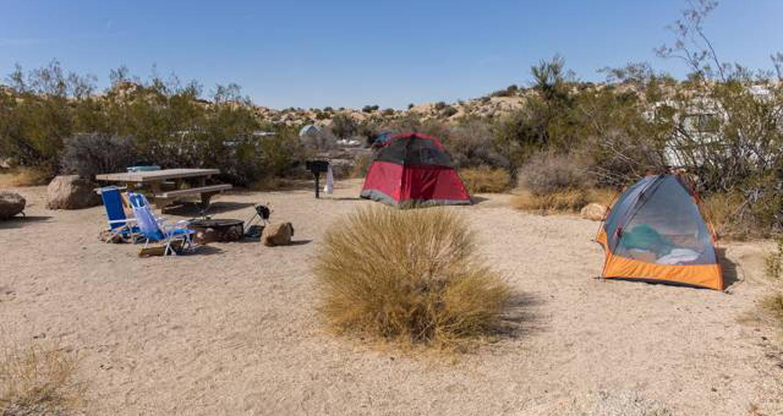 Jumbo Rocks site 103View of campsite