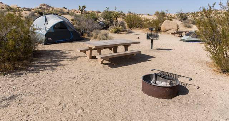 Jumbo Rocks site 107View of campsite