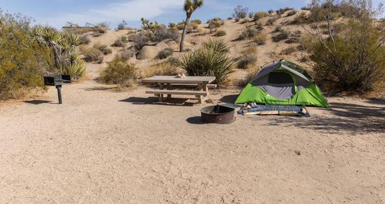 Jumbo Rocks site 110View of campsite