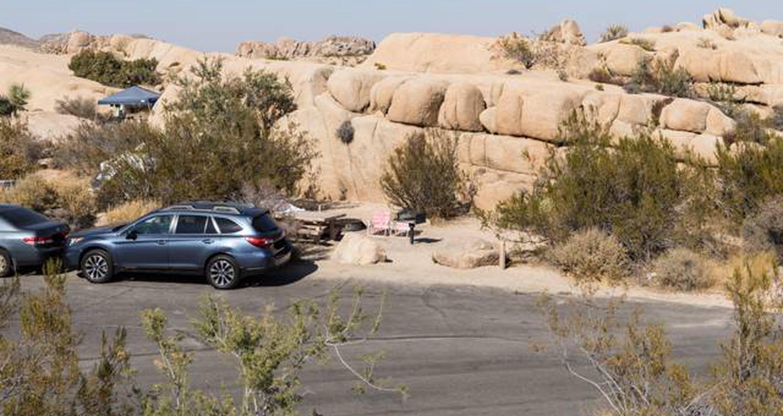 Jumbo Rocks site 111View of campsite