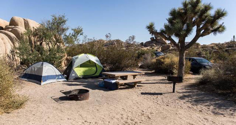 Jumbo Rocks site 112View of campsite