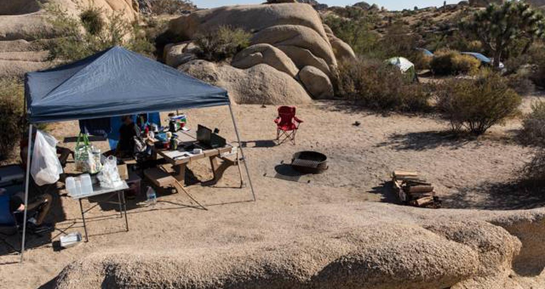 Jumbo Rocks site 113View of campsite