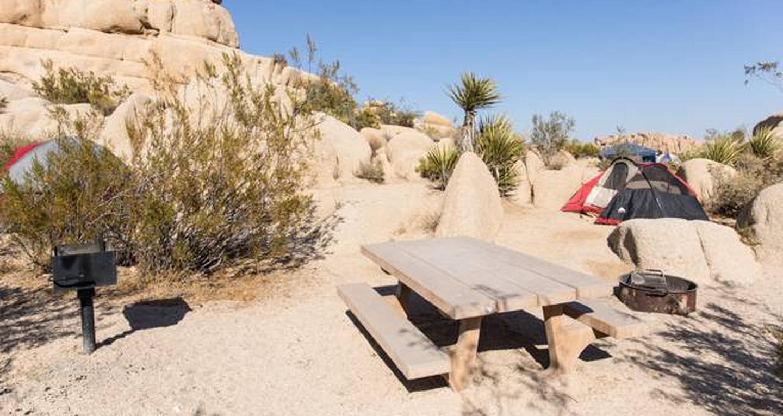 Jumbo Rocks site 114View of campsite