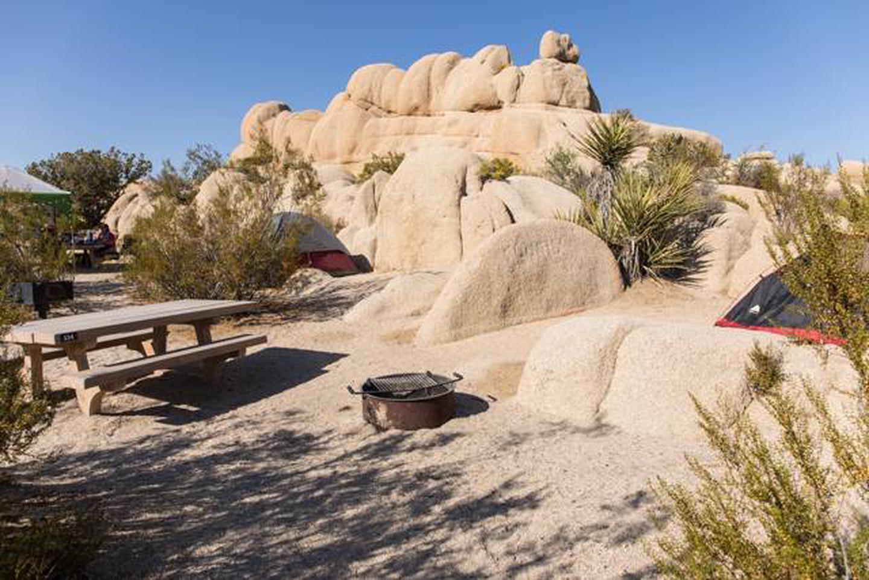 Jumbo Rocks site 114Campsite