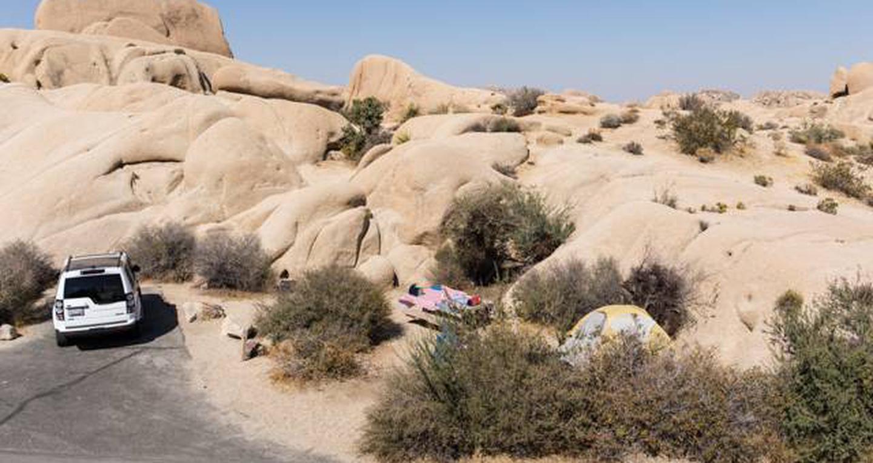 Jumbo Rocks site 117View of campsite