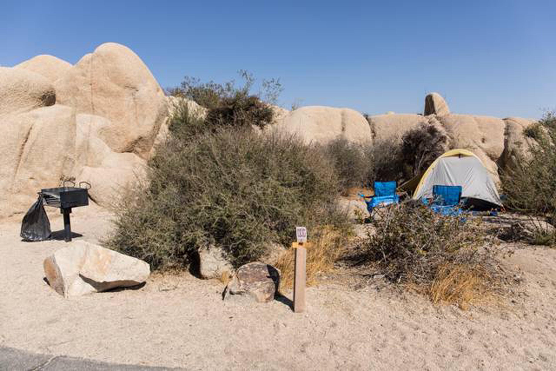Jumbo Rocks site 117Campsite