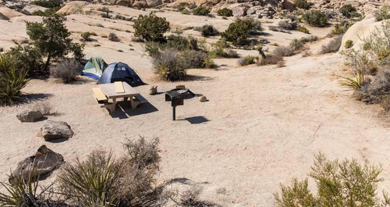 Jumbo Rocks site 120View of campsite