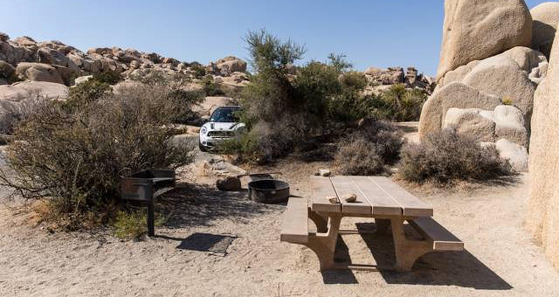 Jumbo Rocks site 121View of campsite