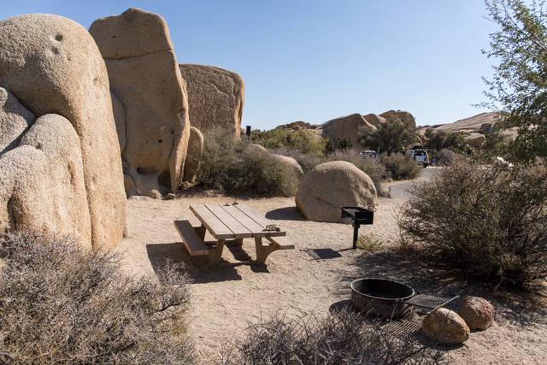 Jumbo Rocks site 121Campsite