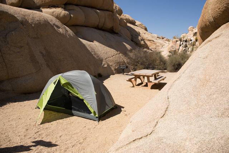 Jumbo Rocks site 122Campsite