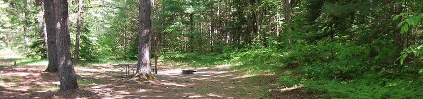 Widewaters Campground site #03