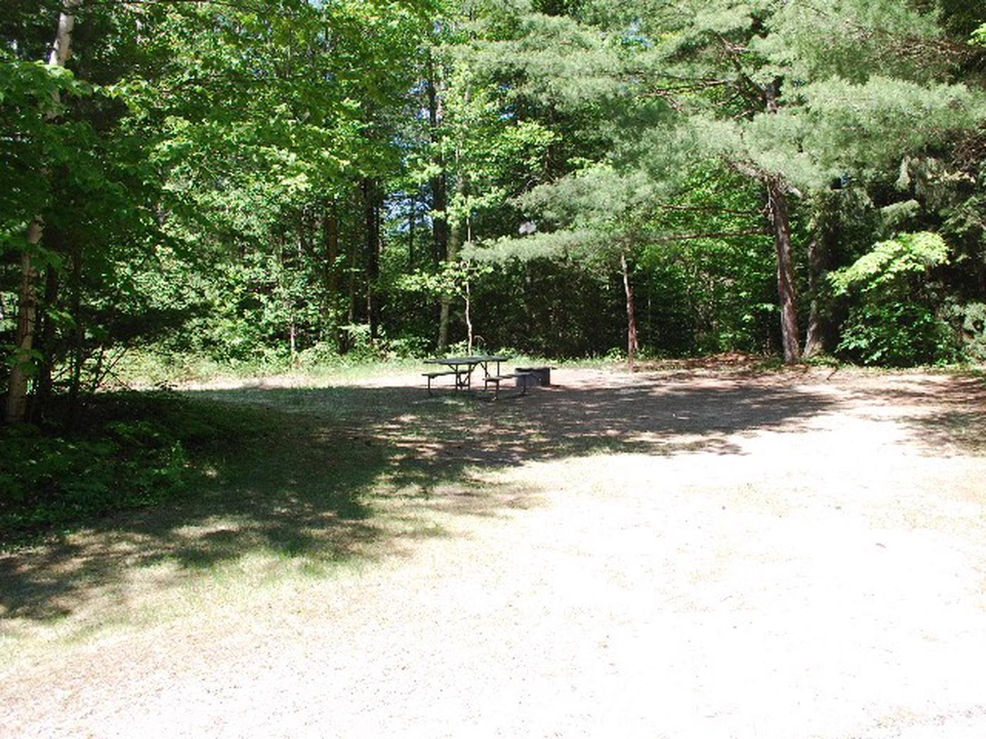 Widewaters Campground site #06
