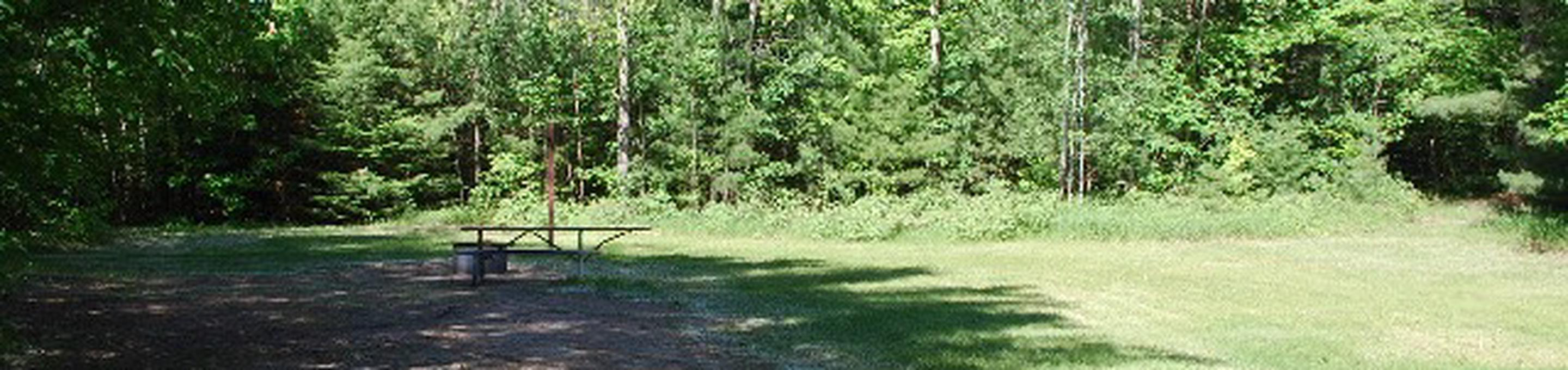 Widewaters Campground site #09