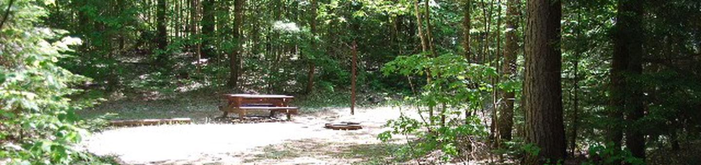 Widewaters Campground site #10