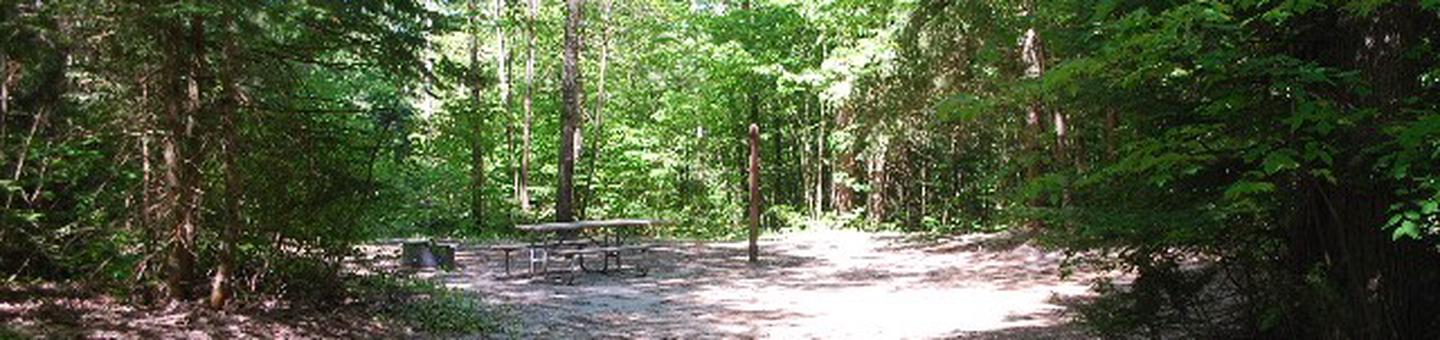 Widewaters Campground site #11