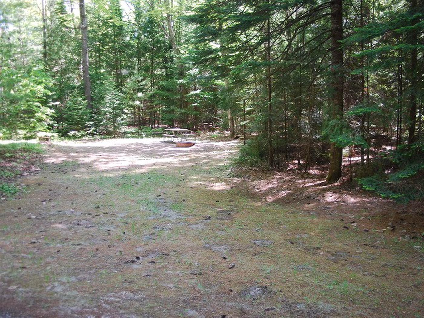 Widewaters Campground site #12