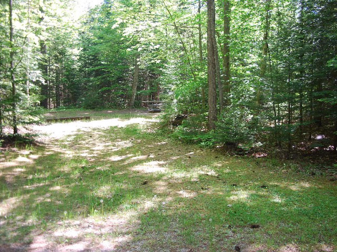 Widewaters Campground site #14