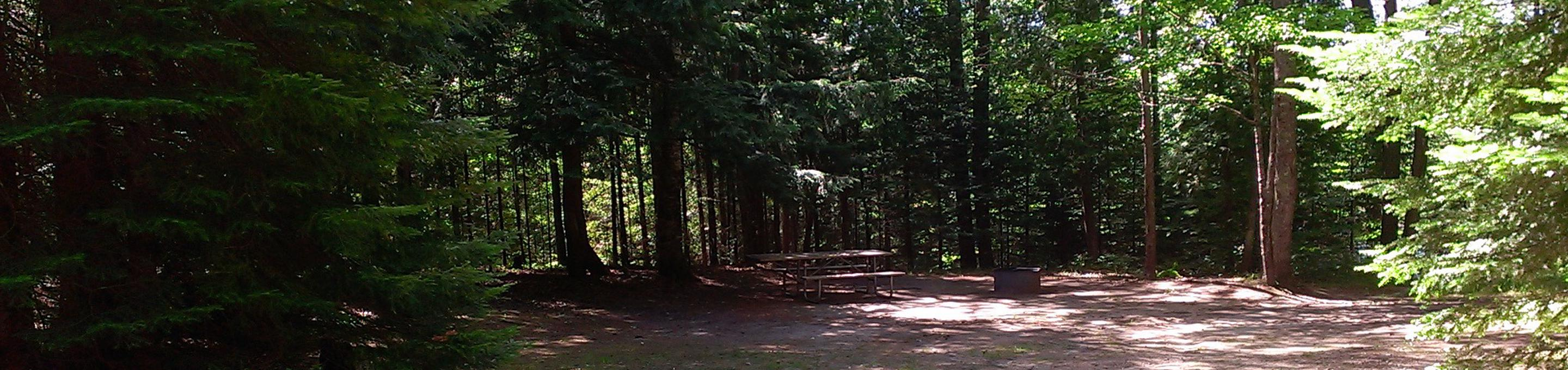 Widewaters Campground site #15