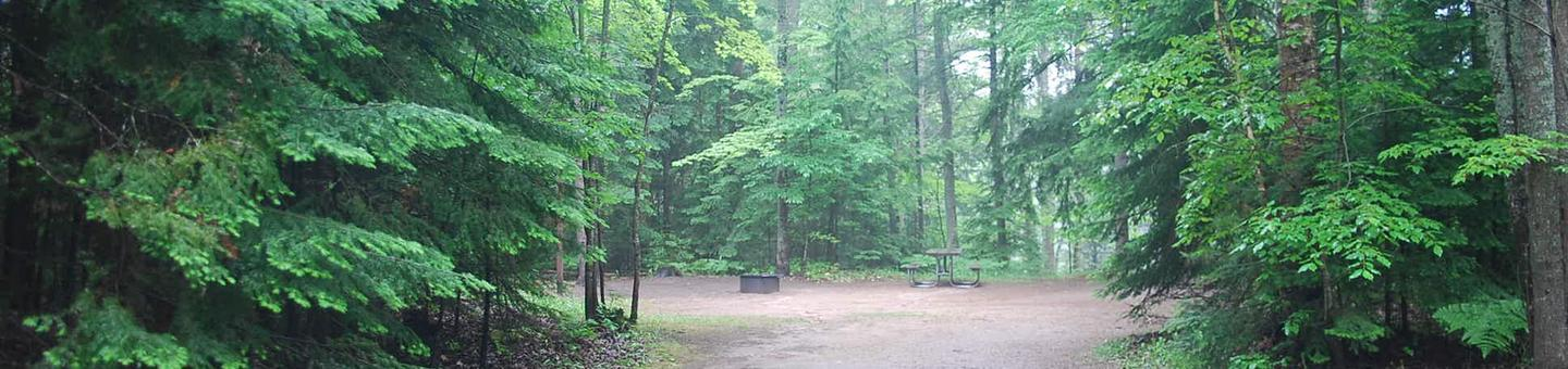 Widewaters Campground site #16