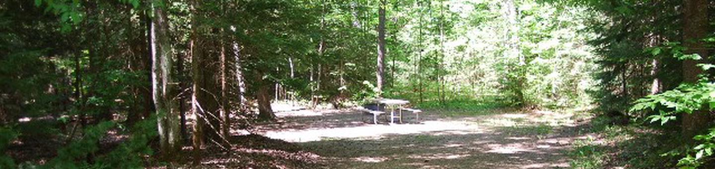Widewaters Campground site #17