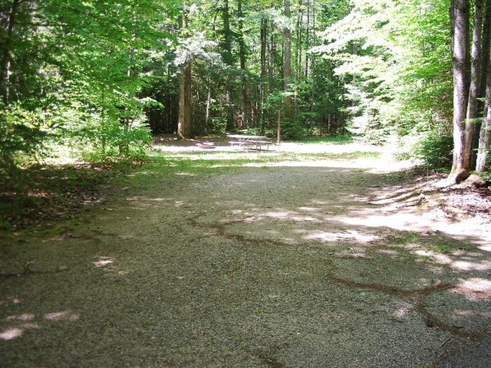 Widewaters Campground site #18