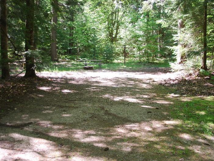 Widewaters Campground site #19