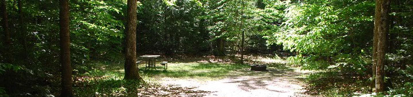 Widewaters Campground site #20