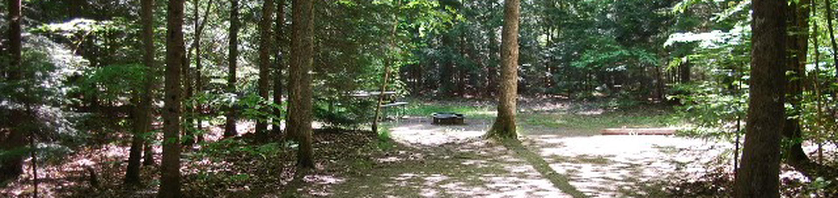 Widewaters Campground site #21