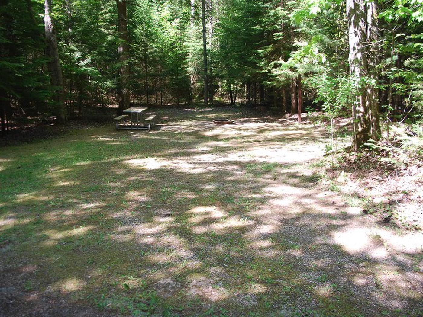 Widewaters Campground site #24