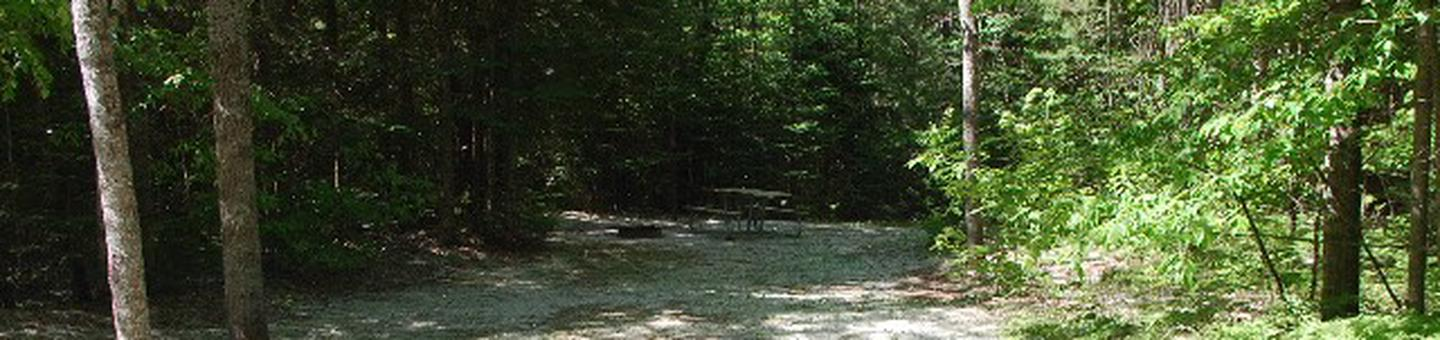 Widewaters Campground site #28RWidewaters Campground site #28