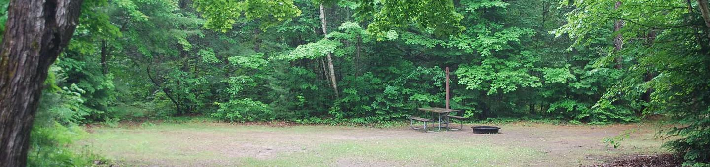 Widewaters Campground site #29