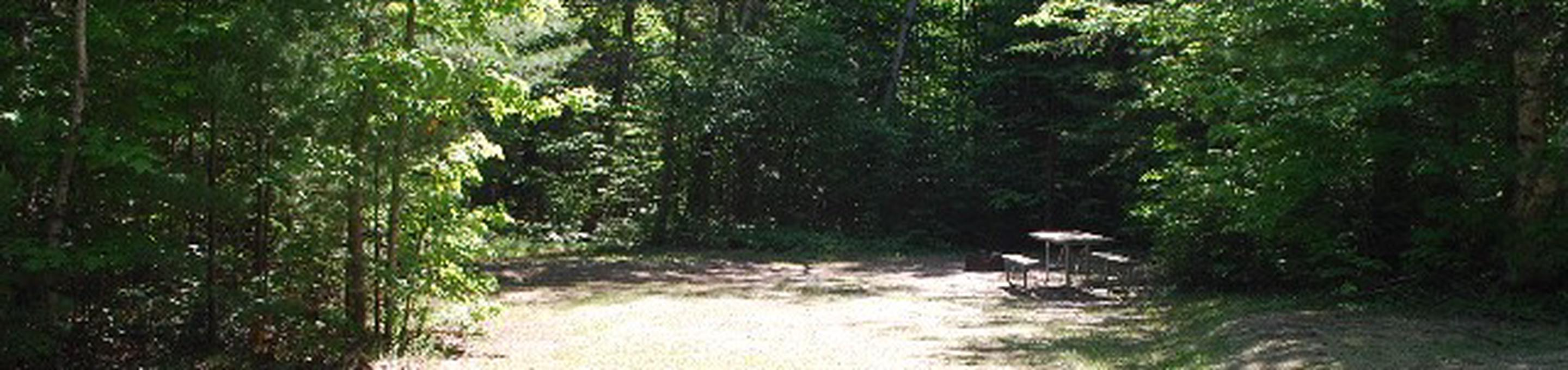 Widewaters Campground site #31