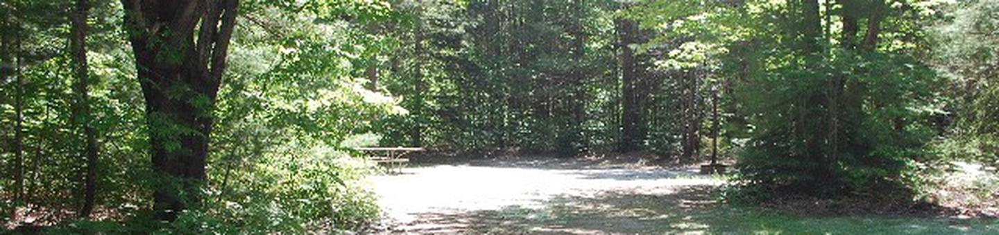 Widewaters Campground site #30