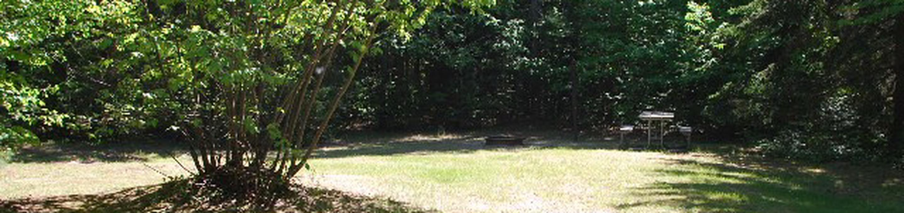 Widewaters Campground site #32
