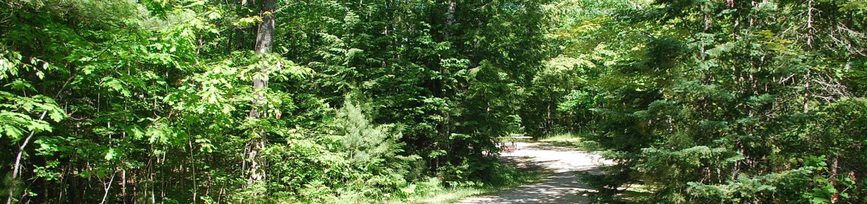 Little Bay de Noc Campground site #06