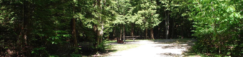 Little Bay de Noc Campground site #11