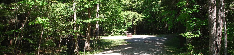 Little Bay de Noc Campground site #12