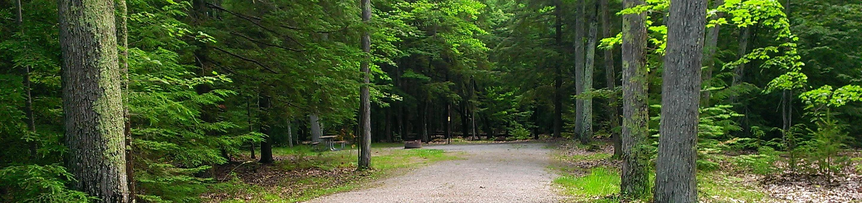 Little Bay de Noc Campground site #18