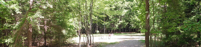 Little Bay de Noc Campground site #19