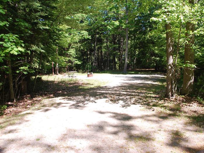 Little Bay de Noc Campground site #20