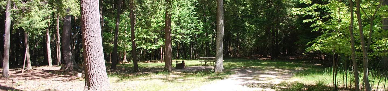 Little Bay de Noc Campground site #21