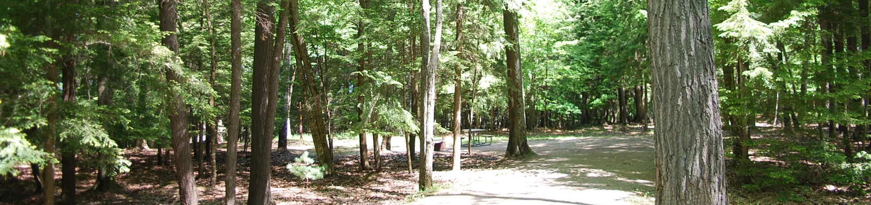 Little Bay de Noc Campground site #22